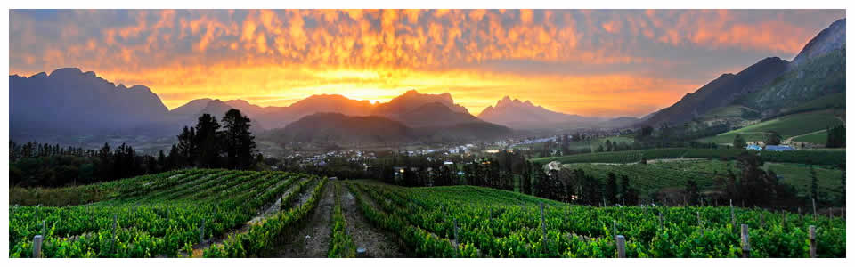 Franschhoek Wine Tours and Accommodation